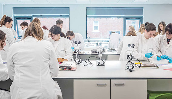 Photo of students studying in a laboratory